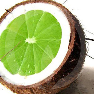 coconut_lime_fragrance