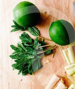 lemongrass and persian lime fragrance