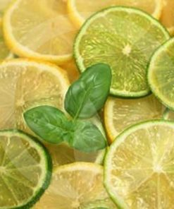 lime basil and mandarin fragrance
