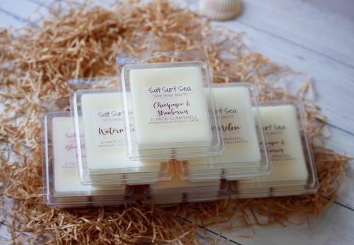 very vanilla 6 pack clamshells soy wax melts